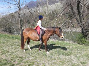 Annabi de Balmes, equitazione terapeutica, rieducazione equestre, equitazione-terapeutica.ch